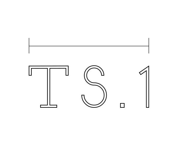 TS1-secondary-logo